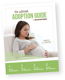The Ultimate Adoption Guide for Expectant Parents packet